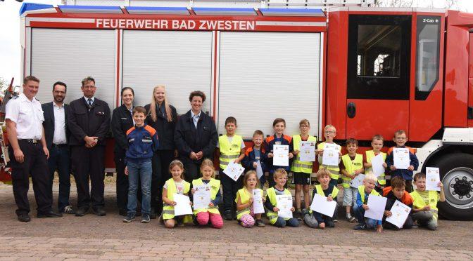 Übernachtung und Tatzen-Abnahme in Bad Zwesten