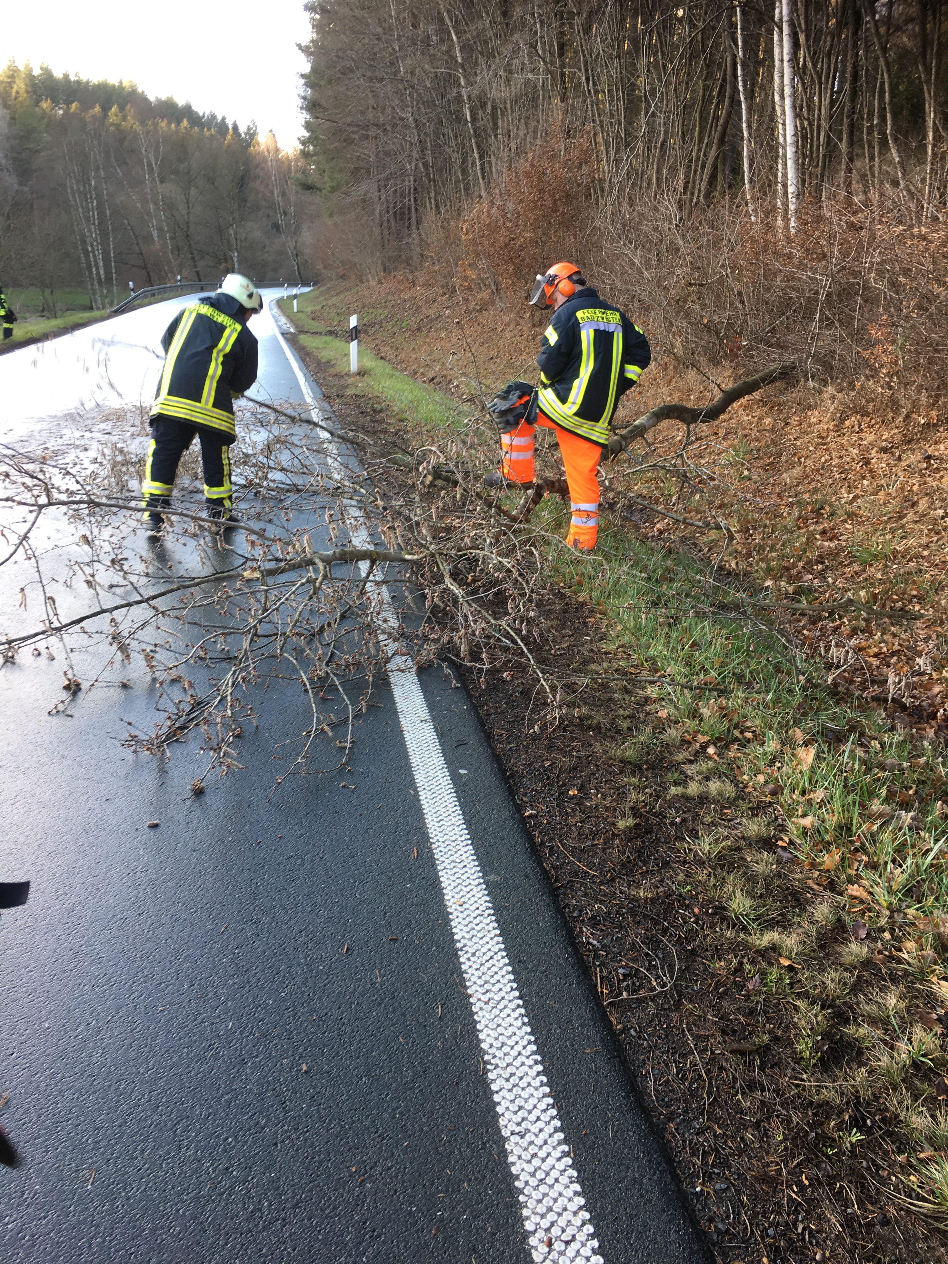 H 1 – Baum versperrt Fahrbahn