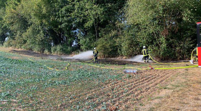 F1 Brand einer Grasfläche